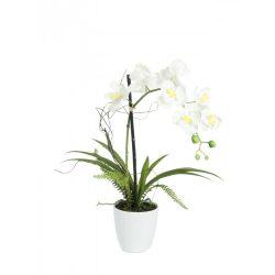 europalms-orchidea-62cm